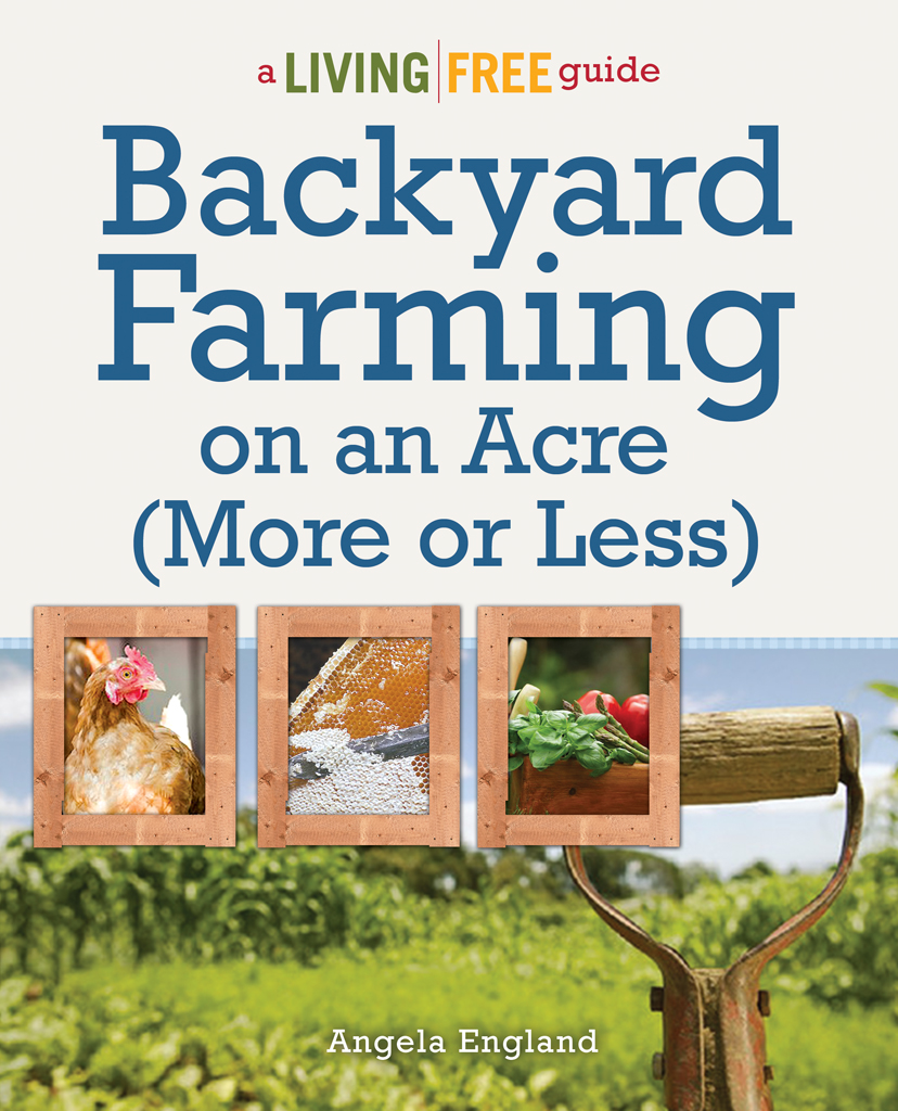 Backyard Farming on an Acre by Angela England @DinkerGiggles